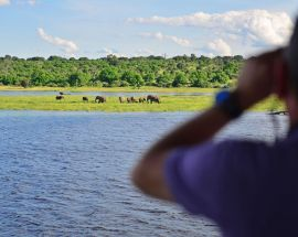 Chobe River Safari - 2 Nights Photo 3
