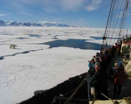 Arctic Summer in North Spitsbergen Photo 12