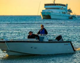 Eco Abrolhos Photo 10