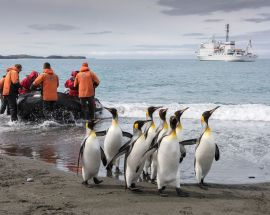 Christmas in Antarctica Photo 1