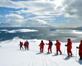Christmas in Antarctica Photo 4
