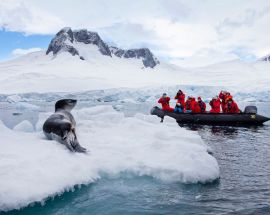 Christmas in Antarctica Photo 5
