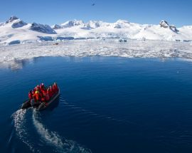 Christmas in Antarctica Photo 8