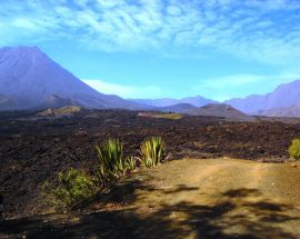 Cape Verde Discovery Photo 11