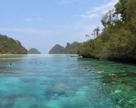 Raja Ampat Explorer Photo 11