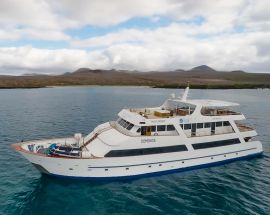 4-Night Galapagos Sea Star Photo 1