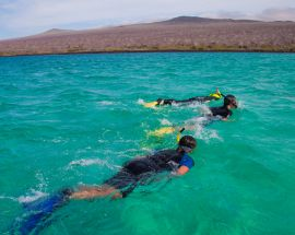 4-Night Galapagos Sea Star Photo 10