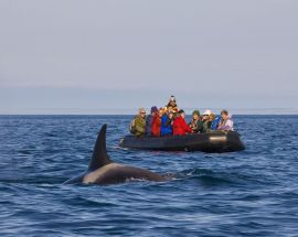 Kamchatka Coast: Jewel of the Russian Far East Photo 9